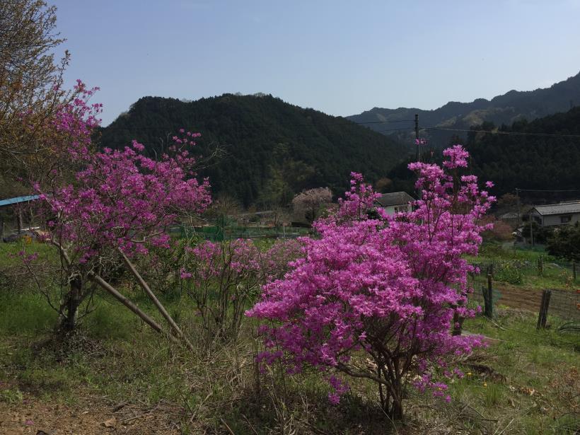 takimakura116.jpg