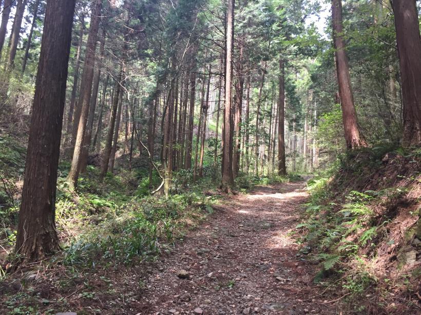 takimakura43.jpg