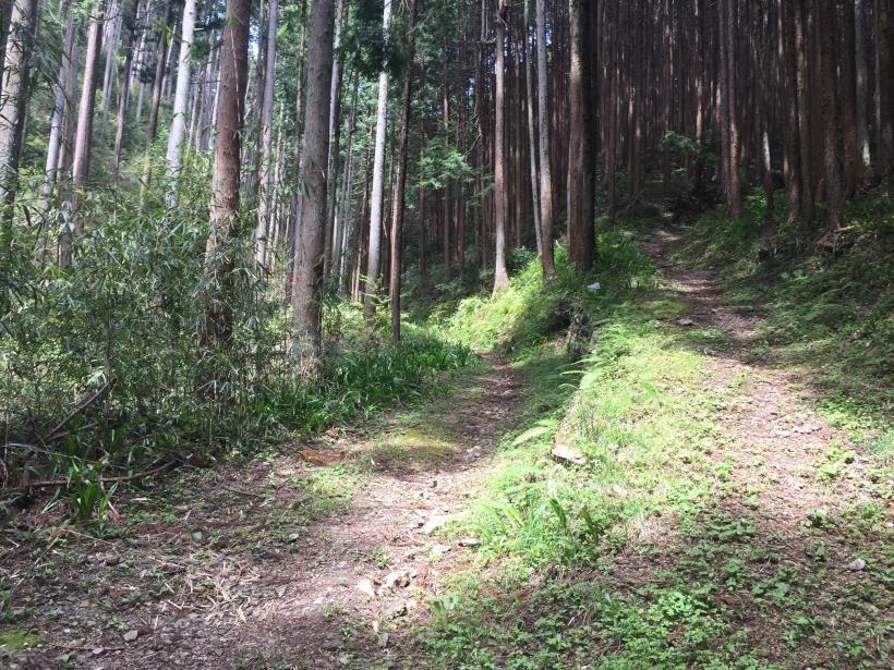 takimakura45.jpg