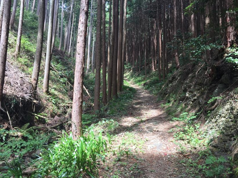 takimakura46.jpg