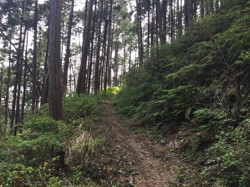 takimakura56.jpg