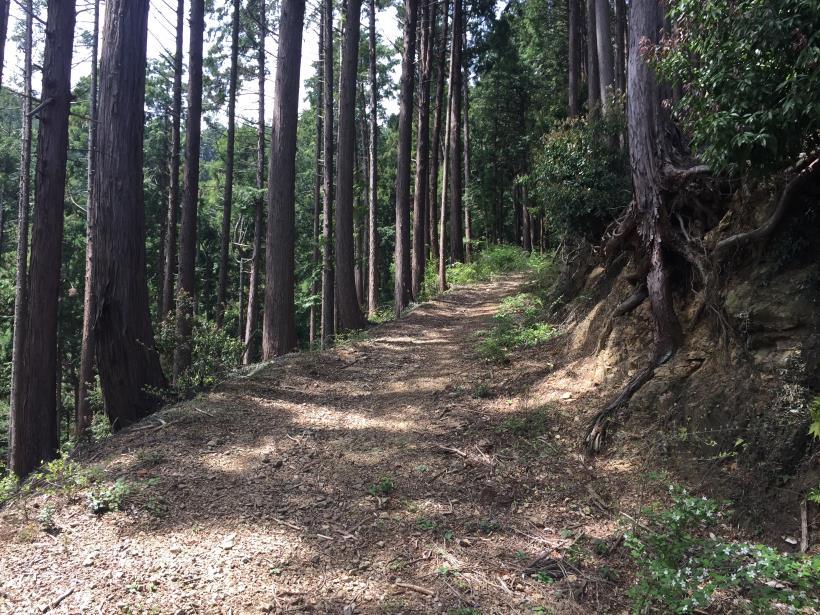 takimakura59.jpg