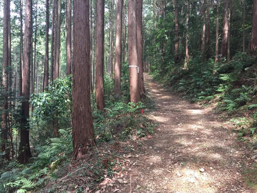 takimakura66.jpg