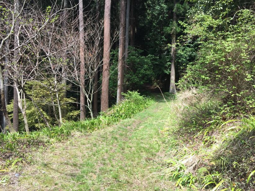 takimakura67.jpg