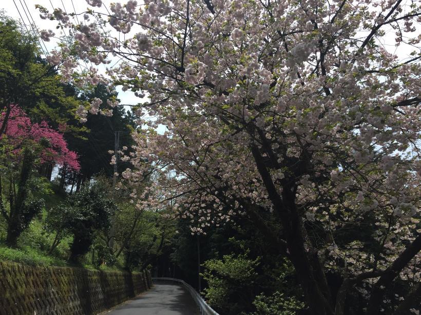 takimakura71.jpg