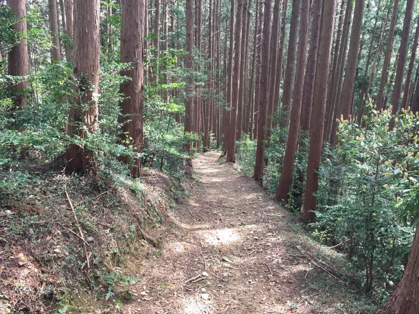 takimakura78.jpg