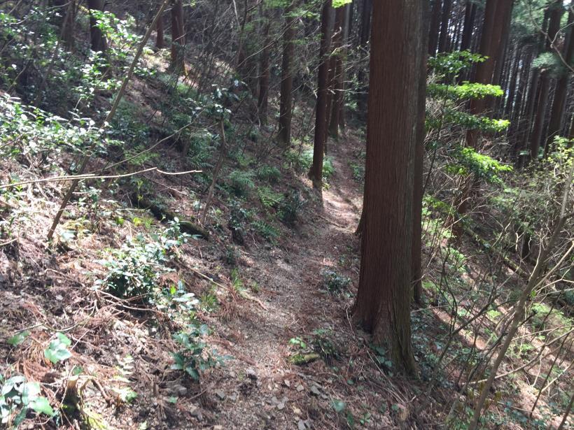takimakura83.jpg