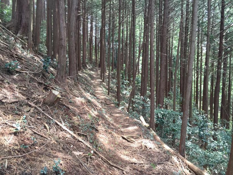 takimakura91.jpg