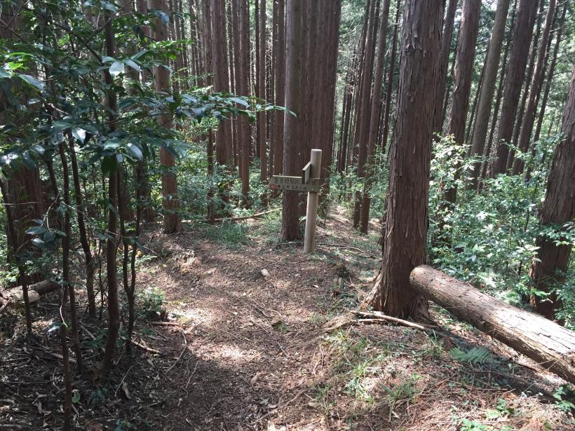 takimakura94.jpg
