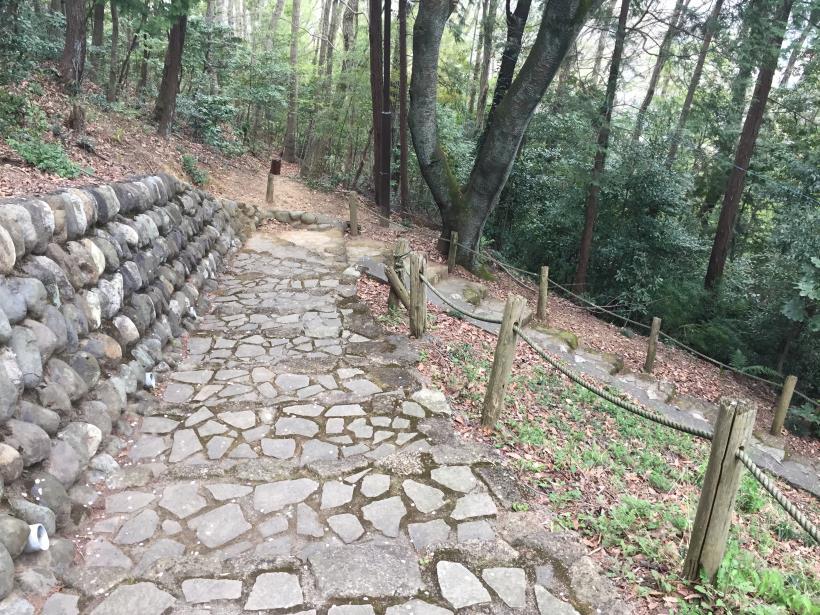takiyamakusabanaA101.jpg