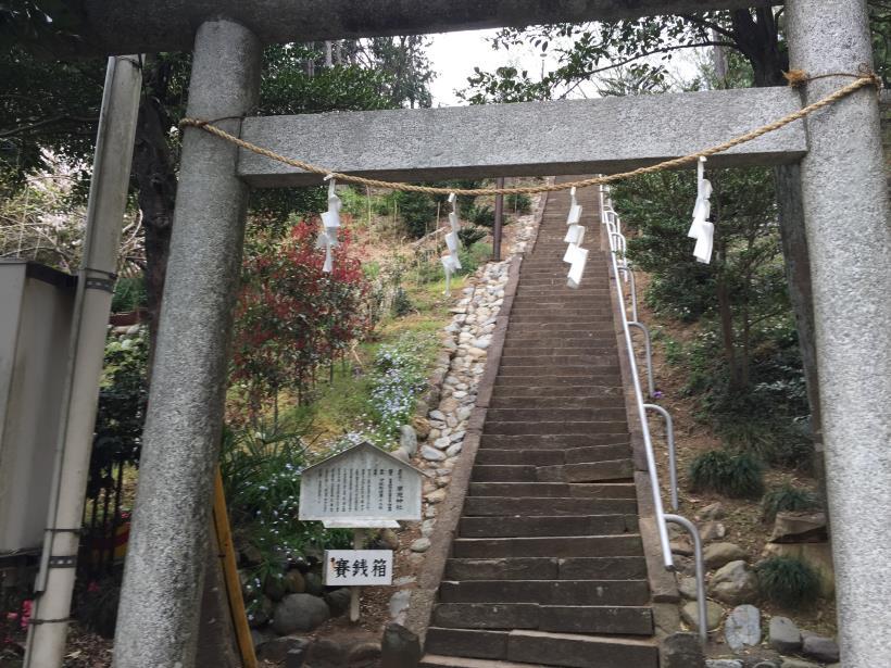 takiyamakusabanaA102.jpg