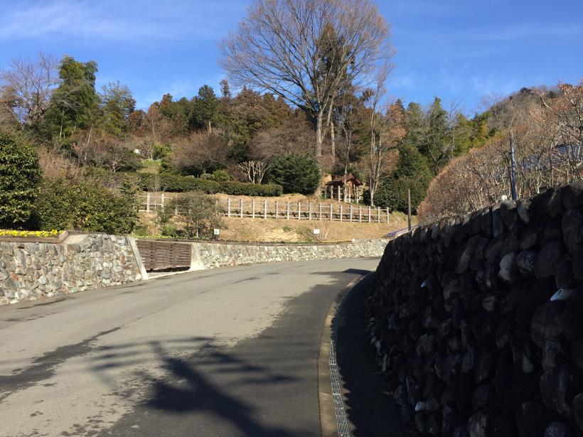 tukuisiroyama16.jpg