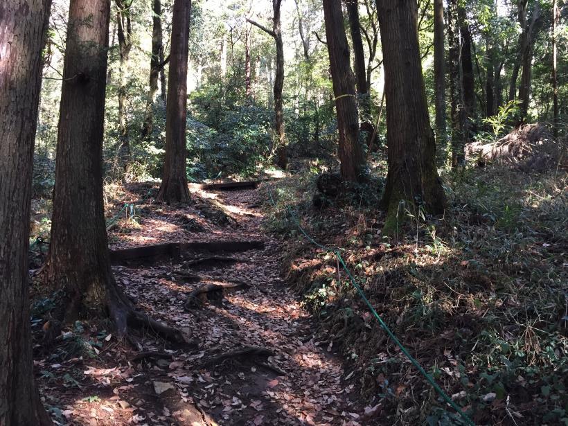 tukuisiroyama34.jpg