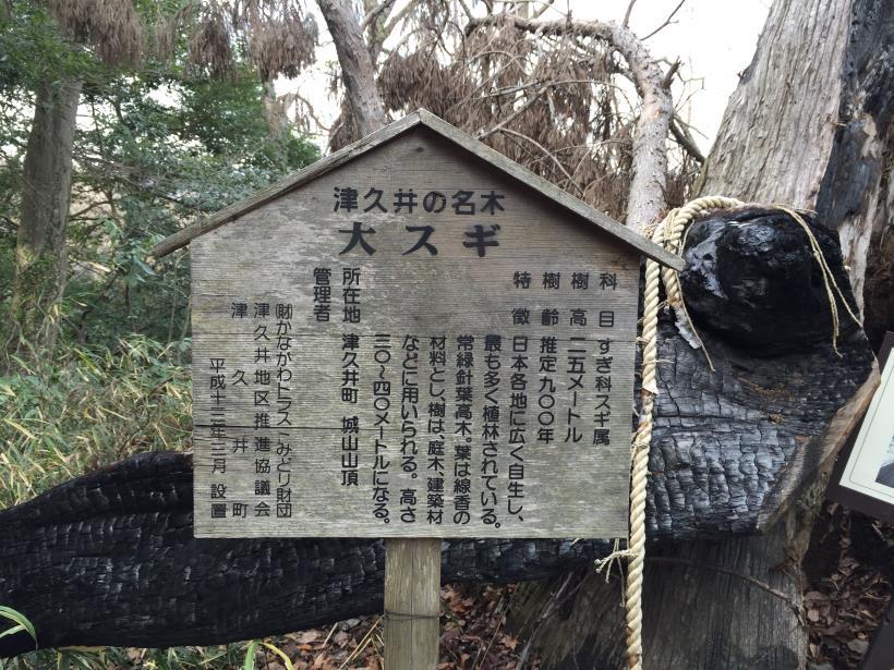 tukuisiroyamagezan05.jpg