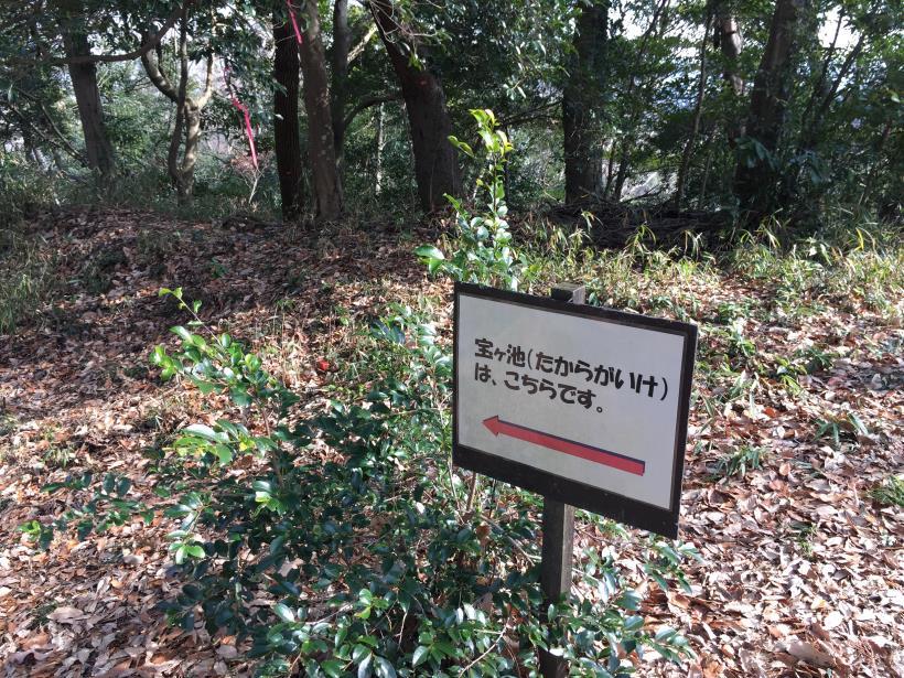 tukuisiroyamasantyou30.jpg