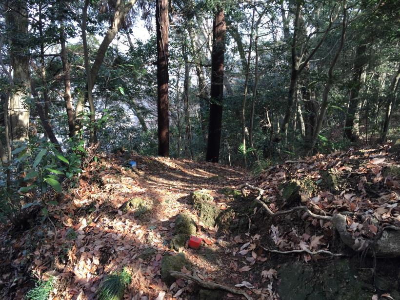 tukuisiroyamasantyou37.jpg