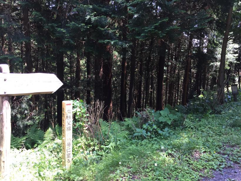 yugatehikyakumiti01.jpg