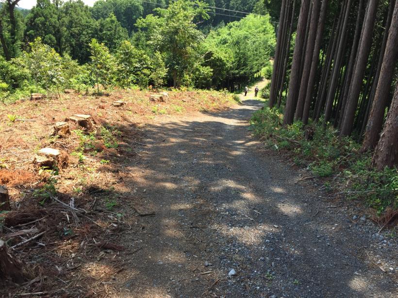 yugatehikyakumiti05.jpg