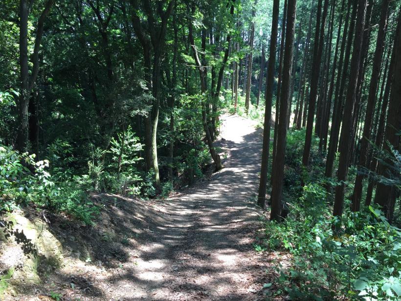 yugatehikyakumiti14.jpg