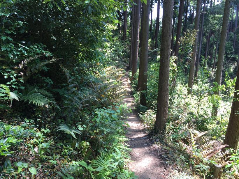 yugatehikyakumiti15.jpg