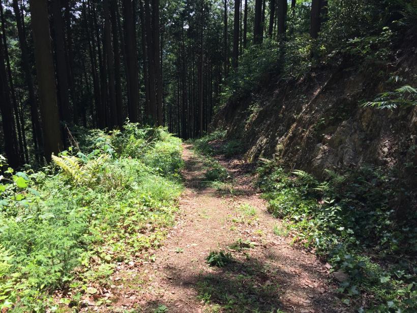 yugatehikyakumiti19.jpg
