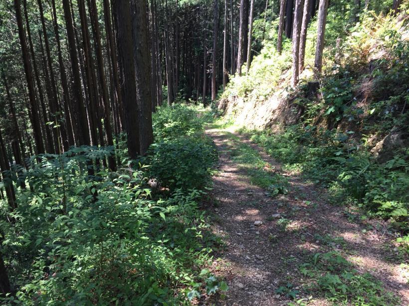 yugatehikyakumiti21.jpg