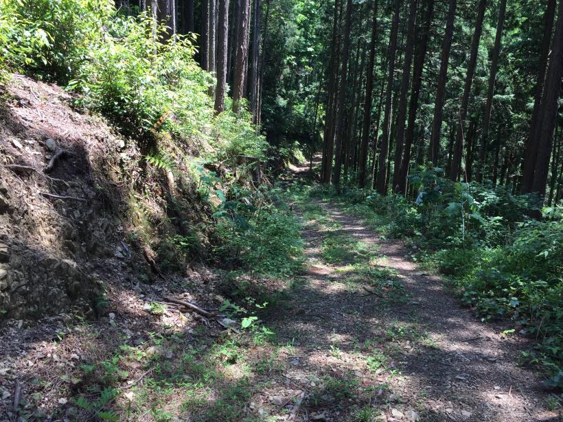 yugatehikyakumiti22.jpg
