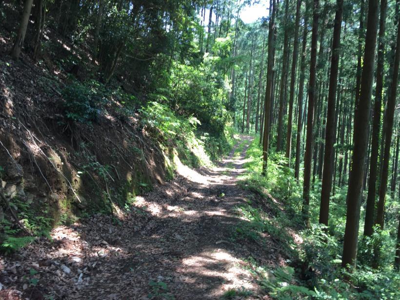 yugatehikyakumiti23.jpg
