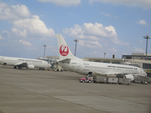 JAL機とジンベエちゃん