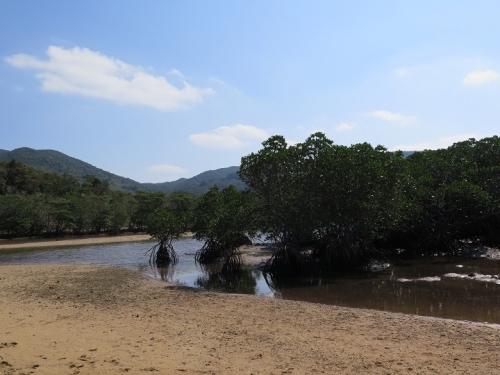 石垣島 笛吹川