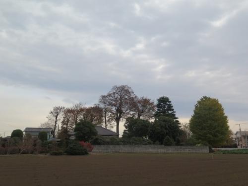 田舎な風景