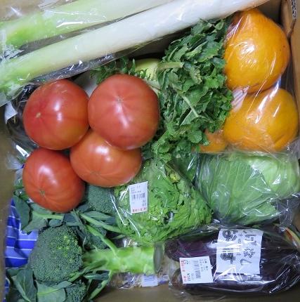 道の駅 筆柿の里・幸田で買った野菜