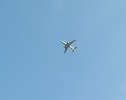 愛知 飛行機