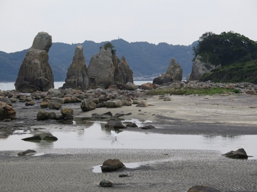 橋杭岩のコサギ