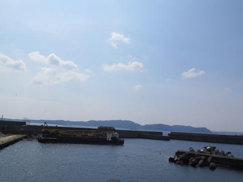 和歌山 カモメ
