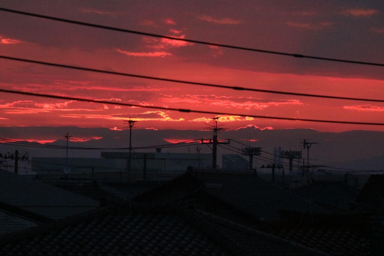●S2015・6・28朝日M_12
