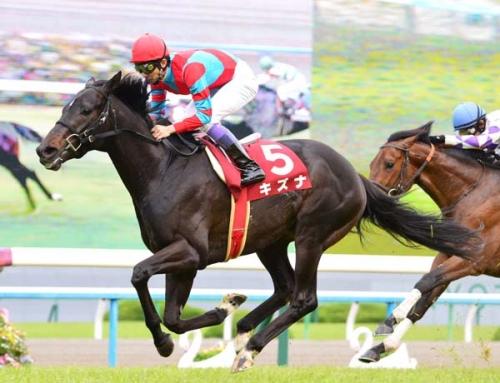 【キズナ】秋は天皇賞へ直行、その後JC、有馬記念へ