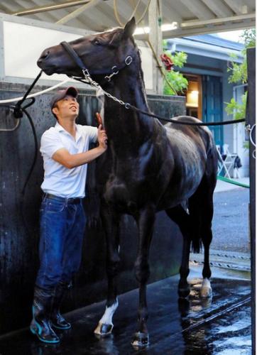 【競馬】《新馬》シルバーステートはディープインパクトを超える