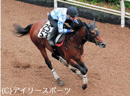 【競馬】戸崎の重賞1番人気wwwwwwwwwwwwwwwwwwwwwwwww