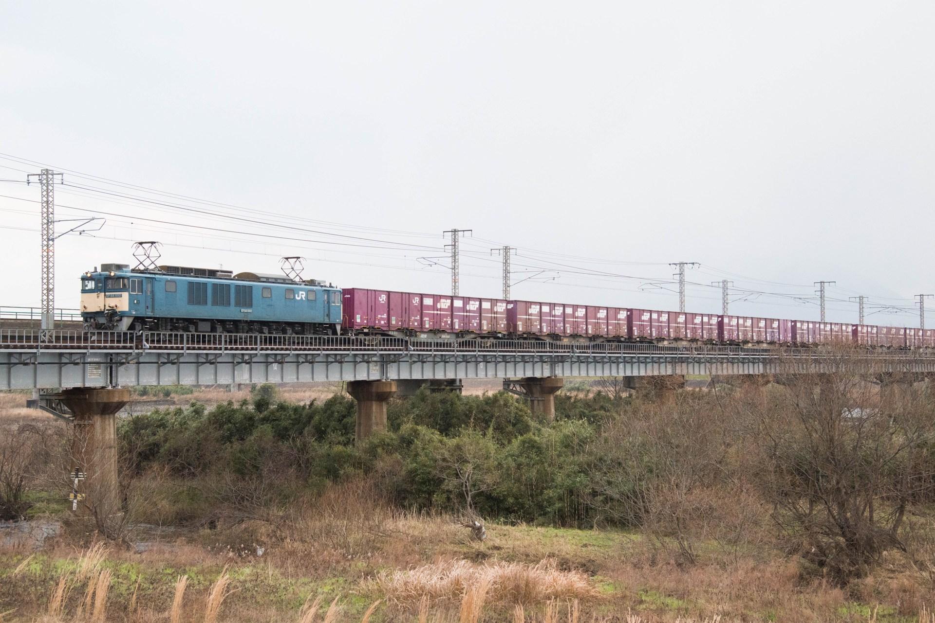 20150111hakubi-1269.jpg