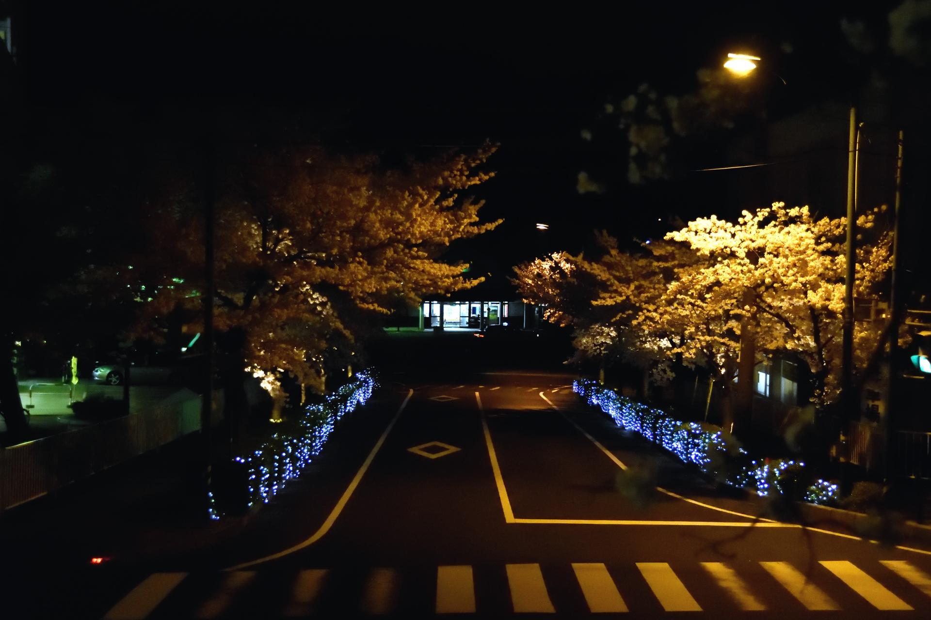 0402kisuki_03