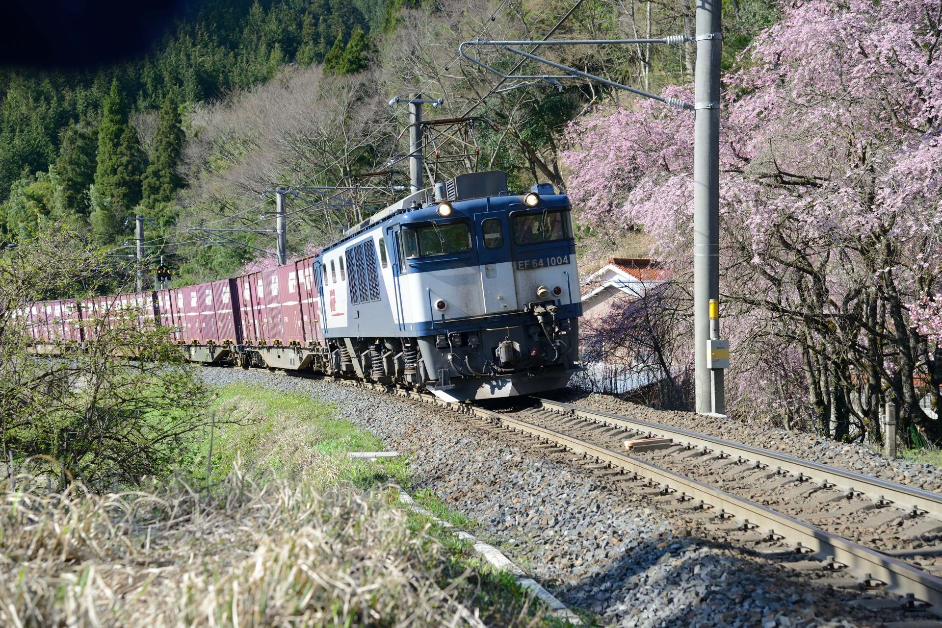 0415shoyama_02