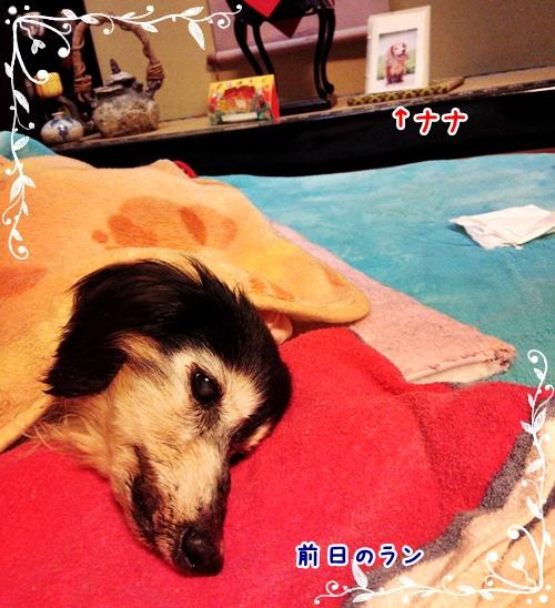 2015-01-17-20-58-21_photo.jpg
