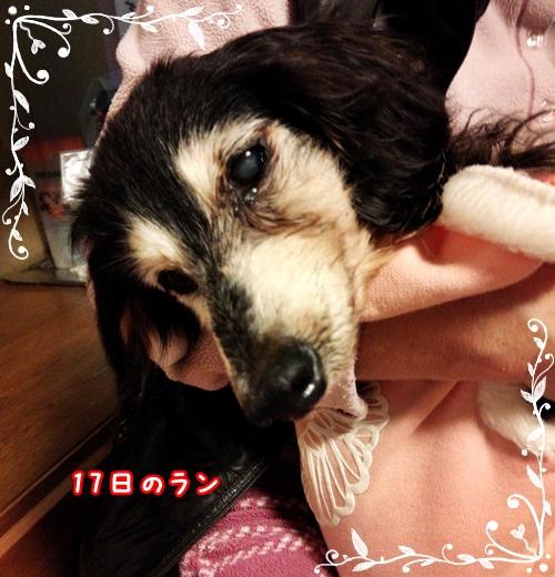 2015-01-17-21-01-56_photo.jpg