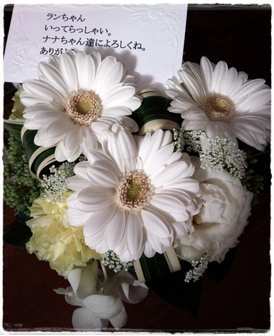 2015-01-21-10-42-17_photo.jpg