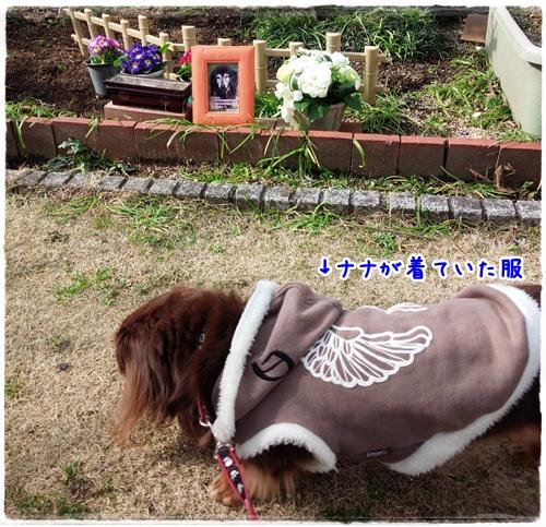 2015-01-25-11-48-36_photo.jpg