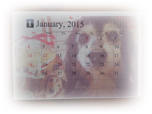2015-01-26-09-47-17_photo.jpg