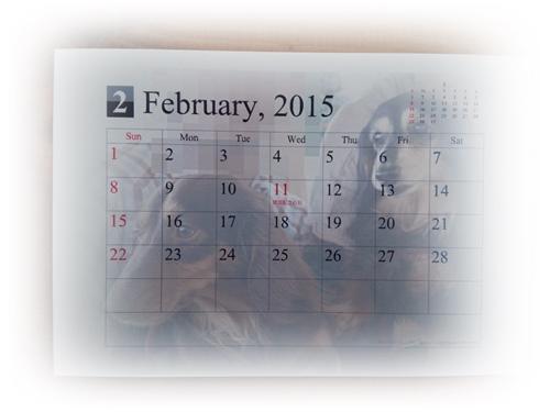 2015-01-26-09-47-54_photo.jpg