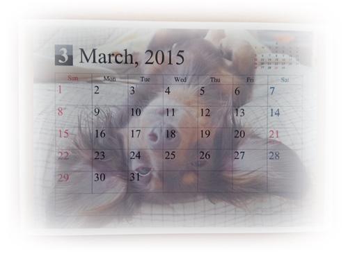 2015-01-26-09-48-11_photo.jpg