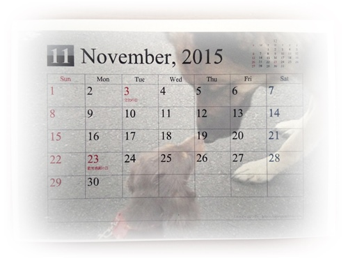 2015-01-26-09-50-25_photo.jpg